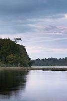 Twilight at Lake Mahinapua near Hokitika, West Coast, Westland, New Zealand