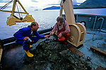 Peopling the Americas, underwater; Shoreline camp site; 12000yrs; Daryl Fedje; Heiner Josenhans, Queen Charlotte Islands, Canada, Hecate Strait, Dredgings from 450 ft down,.