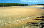 Dried up lagoon, Little Cayman, Cayman Islands, British West Indies,