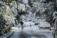 Pictured: A man walks on a snow covered road in the Kastri area of Athens, Greece. Tuesday 08 January 2018<br /> Re: Heavy snowfall has affected most parts of Greece.
