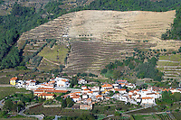 vineyards a village douro portugal