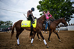 LOUISVILLE, KENTUCKY - APRIL 30: Master Fencer and Julien Leparoux head to the track in preparation for the Kentucky Derby at Churchill Downs in Louisville, Kentucky on April 30, 2019. Evers/Eclipse Sportswire/CSM