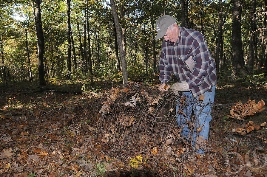 NWA Democrat-Gazette/FLIP PUTTHOFF <br /> Ken French of the Lake Wedington area removes old fencing Oct. 21 2016 during a Northwest Arkansas Master Naturalists work session at Sweden Creek Falls Natural Area.