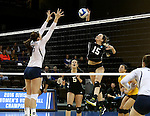 SIOUX FALLS, SD - DECEMBER 8:  Caitlin Sobolewski #15 from American International tries to get a kill past Riley Hanson #5 from Concordia St. Paul during their quarterfinal match at the Women's DII Volleyball Championships at the Sanford Pentagon in Sioux Falls, SD. (Photo by Dave Eggen/Inertia)