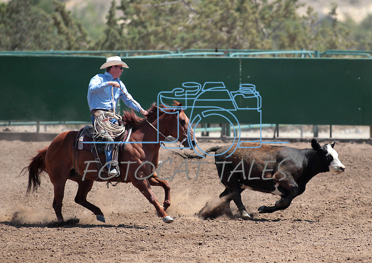 Tyson Torvic competes in the Ranch Horse Class at the Minden Ranch Rodeo on Saturday, July 21, 2012..Photo by Cathleen Allison