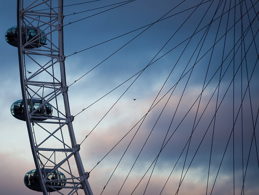View of London Eye with sky and birds