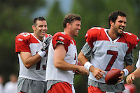 Jul 31, 2009; Flagstaff, AZ, USA; Arizona Cardinals quarterbacks Kurt Warner (left), Brian St. Pierre (center) and Matt Leinart laugh during training camp on the campus of Northern Arizona University. Mandatory Credit: Mark J. Rebilas-