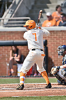 Tennessee Volunteers first baseman Jordan Rodgers (7) awaits a pitch during game one of a double header against the UC Irvine Anteaters at Lindsey Nelson Stadium on March 12, 2016 in Knoxville, Tennessee. The Volunteers defeated the Anteaters 14-4. (Tony Farlow/Four Seam Images)