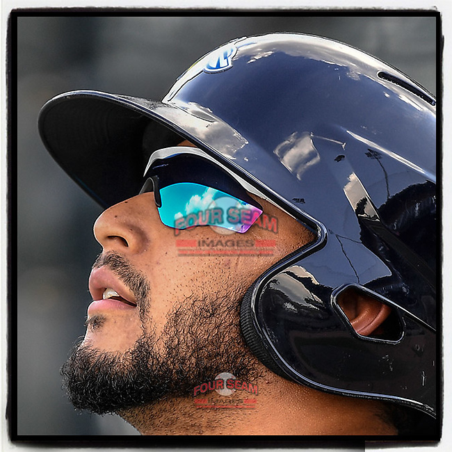 Blue skies and fluffy clouds are reflected in the sunglasses of Jose Brizuela of the Columbia Fireflies during batting practice before a game on Wednesday, August 29, 2018, at Spirit Communications Park in Columbia, South Carolina. (Tom Priddy/Four Seam Images)