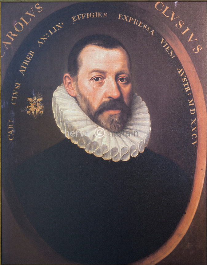 "Hollande, région des champs de fleurs, Lisse, musée de la Tulipe Noire, ou en néerlandais Museum de Zwarte Tulp, reproduction d'un portrait de Charles de l'Ècluse dit Carolus Clusius, le premier à cultiver la tulipe en Hollande dans le Jardin Botanique de Leiden en 1593.// Holland, ""Dune and Bulb Region"", Lisse, museum of the Black Tulip or  Museum de Zwarte Tulp, Portrait of Carolus Clusius. Oil on canvas, 1585. [University Library, Scaliger Institute]..v This portrait, which is attributed to Jacob de Monte, is the only known painted portrait of Clusius. It was made in 1585 when Clusius was in Vienna. On the left the coat of arms of Clusius is depicted."
