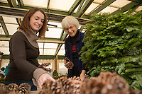 Kathleen Hennessy of Ardmore and Cathy Fasy of Chestnut Hill select pine cones for their wreaths at the Winter in the Wissahickon event hosted by the Friends of the Wissahickon on December 1. (Dave Tavani/for NewsWorks)