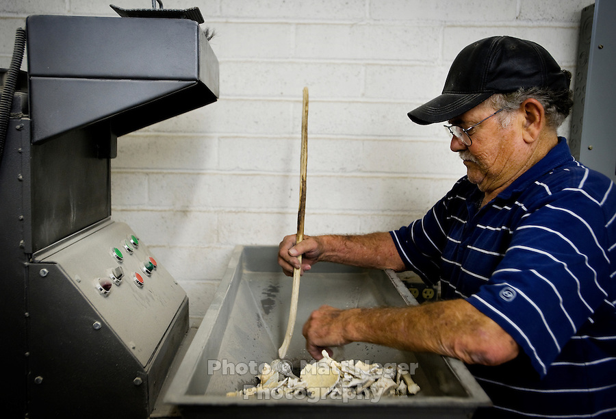 Cremationist Jerry Wright (cq) of Adair Funeral Home places remaining skeleton fragments into a grinder for the final stage of a cremation of an unidentified body in Tucson, Arizona, Tuesday, August 11, 2009. The body was found near the Robles Junction in Arizona in November 2006. When the medical examiners office and the Mexican Consulate conclude that a body cannot be identified the remains are then cremated and buried in a cemetery in Tucson...PHOTOS/ MATT NAGER