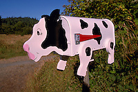An Artistic and Whimsical Folk Art Cow Mailbox on North Pender Island, in the Southern Gulf Islands, British Columbia, Canada