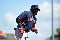 Boston Red Sox designated hitter David Ortiz (34) runs the bases after hitting a home run during a Spring Training game against the Pittsburgh Pirates on March 12, 2015 at McKechnie Field in Bradenton, Florida.  Boston defeated Pittsburgh 5-1.  (Mike Janes/Four Seam Images)