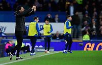 Lincoln City manager Danny Cowley shouts instructions to his team from the technical area<br /> <br /> Photographer Chris Vaughan/CameraSport<br /> <br /> Emirates FA Cup Third Round - Everton v Lincoln City - Saturday 5th January 2019 - Goodison Park - Liverpool<br />  <br /> World Copyright &copy; 2019 CameraSport. All rights reserved. 43 Linden Ave. Countesthorpe. Leicester. England. LE8 5PG - Tel: +44 (0) 116 277 4147 - admin@camerasport.com - www.camerasport.com