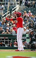 Aristides Aquino - Cincinnati Reds 2020 spring training (Bill Mitchell)