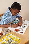 8 year old boy sorting and classifying rock collection using magnifying glass and illustrations in book horizontal