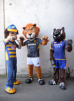 Mascots on day two of the 2016 HSBC Wellington Sevens at Westpac Stadium, Wellington, New Zealand on Saturday, 30 January 2016. Photo: Dave Lintott / lintottphoto.co.nz