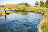 An angler fishes a productive stretch of the Beaverhead River north of Dillon.
