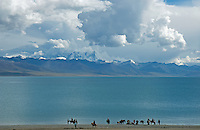 Tibet Landscapes Lake Namtso which is the highest saltwater lake in the world at an elevation of 4870 meters. The snow-covered Mountain range just behind the lake reach over 7500 meters.