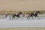 Interislander Summer Festival Harness Racing. Sunday 25 January 2015. Blenheim, New Zealand. Ricky Wilson/www.shuttersport.co.nz