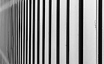 Lines in a fence in Watsons Bay, NSW, Australia