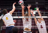 STANFORD, CA - January 5, 2019: Kyler Presho, Jordan Ewert at Maples Pavilion. The Stanford Cardinal defeated UC Santa Cruz 25-11, 25-17, 25-15.