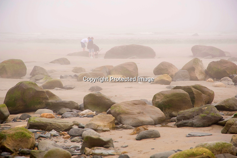 Young Boys Exploring on a Foggy Beach in Wells, Maine