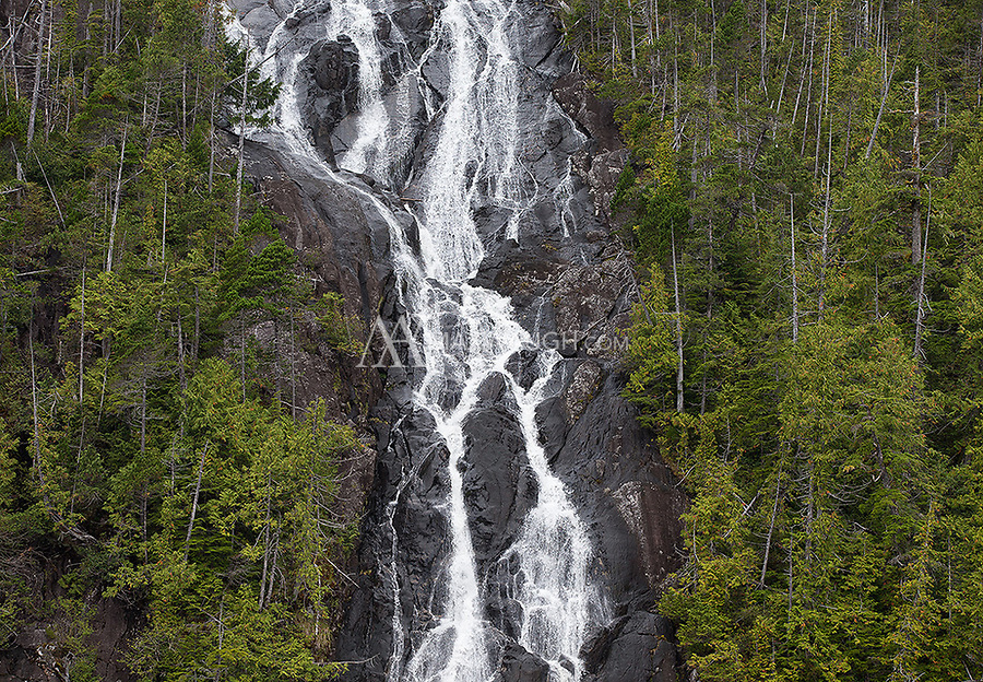 Though it was dryer than normal, we still saw a lot of waterfalls in the Great Bear.