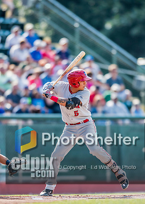 16 July 2017: Auburn Doubledays infielder Andres Martinez in action against the Vermont Lake Monsters at Centennial Field in Burlington, Vermont. The Monsters defeated the Doubledays 6-3 in NY Penn League action. Mandatory Credit: Ed Wolfstein Photo *** RAW (NEF) Image File Available ***