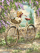 Dona Gelsinger, STILL LIFE STILLLEBEN, NATURALEZA MORTA, paintings+++++,USGE1556,#I# #161# bicycle