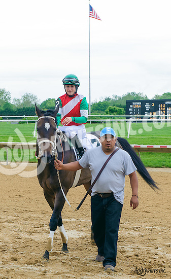 Theresa's Honor winning at Delaware Park on 5/21/16