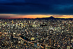 Mt. Fuji and downtown Tokyo as seen at dusk from Tokyo SkyTree on Tuesday Feb. 7, 2017 in Tokyo, Japan.<br /> Photo by Kevin Clifford/Nevada Photo Source