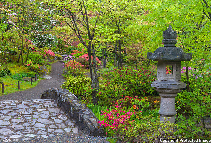 Seattle, WA: Stone bridge and lantern with spring colors in the Washington Park Arboretum's Japanese Garden