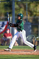 Dartmouth Big Green third baseman Blake Crossing (13) at bat during a game against the Northeastern Huskies on March 3, 2018 at North Charlotte Regional Park in Port Charlotte, Florida.  Northeastern defeated Dartmouth 10-8.  (Mike Janes/Four Seam Images)