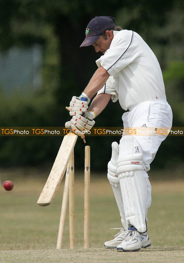 Orsett CC vs Pegasus & Corringham CC - Essex Sunday League - 16/07/06 - (Gavin Ellis 2006)