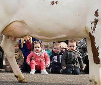 06/04/09 Free milk for nursery children