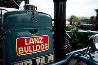 Cow contest, old tractors