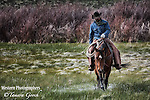 A photo of a cowboy walking his horse through a marsh to check the ground. Cowboy Photos, riding,roping,horseback