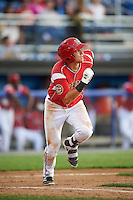 Batavia Muckdogs shortstop J.J. Gould (49) at bat during a game against the Aberdeen Ironbirds on July 15, 2016 at Dwyer Stadium in Batavia, New York.  Aberdeen defeated Batavia 4-2. (Mike Janes/Four Seam Images)