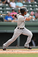 Center fielder Leody Taveras (3) of the Hickory Crawdads bats in a game against the Greenville Drive on Sunday, July 16, 2017, at Fluor Field at the West End in Greenville, South Carolina. Hickory won, 3-1. (Tom Priddy/Four Seam Images)