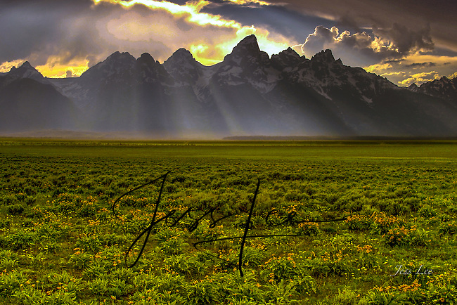 Afternoon rain showers in Grand Teton National Prks