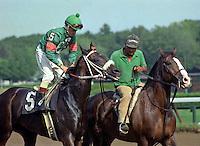 Viva Sec (Secretariat), Due Process runner, won or placed in 26 of 35 starts.  Don McBeth up, Saratoga.