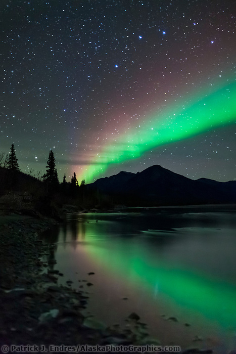 Green and violet bands of aurora borealis, or northern lights, reflect in the Koyukuk River in the Brooks Range mountains of Alaska's Arctic.