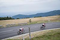 Thomas de Gendt (BEL/Lotto-Soudal) & Giulio Ciccone (ITA/Trek-Segafredo) riding ahead of the breakaway in the descent of the Grand Ballon<br /> <br /> Stage 6: Mulhouse to La Planche des Belles Filles (157km)<br /> 106th Tour de France 2019 (2.UWT)<br /> <br /> ©kramon