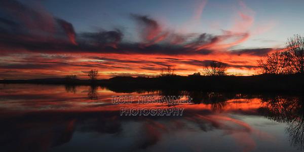 Sunset over Wetland, Bosque del Apache National Wildlife Refuge, Socorro, New Mexico, USA