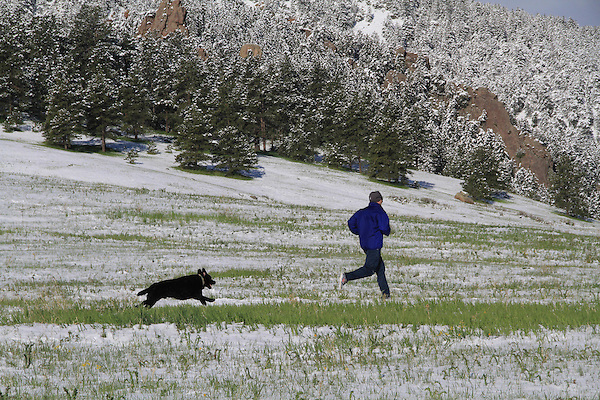 Man and dog running after a spring snowstorm in Boulder, Colorado, USA. .  John leads private photo tours in Boulder and throughout Colorado. Year-round.