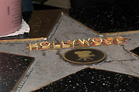 LOS ANGELES - MAR 1:  Hollywood star making in progress at the 15TH Awards Media Welcome Center at Hollywood Museum on March 1, 2018 in Los Angeles, CA