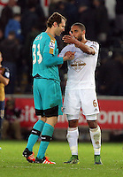 (L-R) Petr Cech of Arsenal greets team captain Ashley Williams of Swansea after the Barclays Premier League match between Swansea City and Arsenal at the Liberty Stadium, Swansea on October 31st 2015