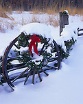 Bureau County, IL <br /> Snow cover on a split rail fence and wagon wheels near prairie grasses and the bare trees of a winter forest